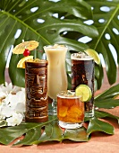 Four Tropical Rum Drinks on Monstera Leaves