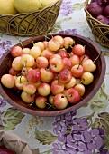 Bowl of Organic Cherries
