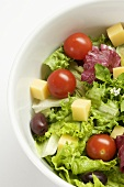 Garden Salad with Cheese Cubes