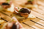 Ham and Cheese Cracker with Olive; Hors d'Oeuvre