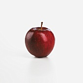 A Macintosh Apple