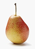 Single Pear on a White Background