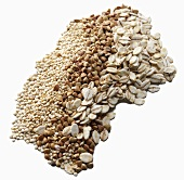 Mixed Whole Grains on White Background