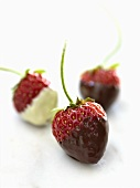 White and Dark Chocolate Dipped Strawberries on White Background