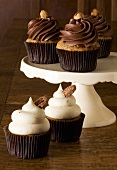 Assorted Frosted Cupcakes with Nut Garnishes