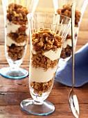 Dessert Glasses Layered with Vanilla Yogurt and Granola