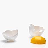 Ein aufgeschlagenes Ei: Eierschalen und Eigelb