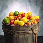 Verschiedene Tomaten im Holzfass
