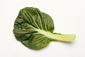 Organic Tat Soi Leaf