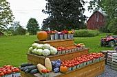 Farmers Roadside Vegetable Stand