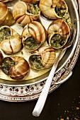 Escargot in Garlic Herb Butter; Fork