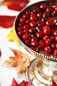 Autumn Cranberry Centerpiece