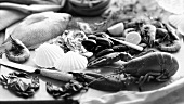 Fresh Caught Seafood; Red Snapper, Lobster, Clams, Mussels, Oysters, Crab and Shrimp
