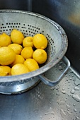 Lemons in Colander in Stainless Steel Sink