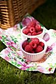 Fresh Raspberries on Napkins in Grass; Picnic Basket