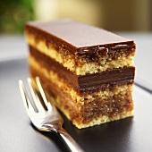 Piece of Opera Cake