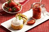 Strawberry Shortcake (Erdbeerdessert, USA)