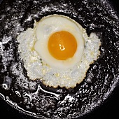 Egg Frying in Frying Pan