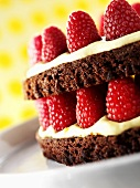 Layered Chocolate Raspberry Torte