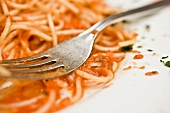 Spaghetti Pomodora on a Plate with Fork