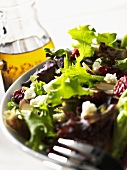 Mixed Greens Salad with Olive Oil