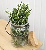 Fresh Rosemary in a Glass Jar