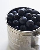 Organic Blueberries in Aluminum Measuring Cup