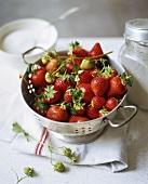 Frische Bio-Erdbeeren im Fussseiher