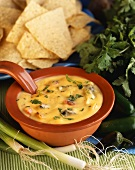 Southwestern Cheese Dip with Tortilla Chips