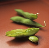 Soybeans; In and Out of Pod