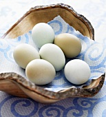 Fresh Free Range Hen Eggs in a Wooden Bowl