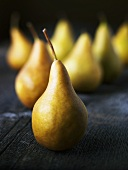 Fresh Bosc Pears
