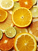 Assorted Citrus Fruit Slices