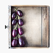 Baby Eggplants in a Wooden Drawer