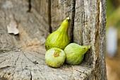 Fresh Organic Figs on a Tree Stump