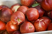 Fresh Nectarines in a Crate