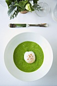 Organic Soft Boiled Egg in Cilantro Sauce; From Above