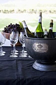 De Wetshof Wine Bucket with Wine Bottles; Glasses; Outdoor Table