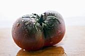 Freshly washed heirloom tomato