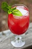 Watermelon Mocktail with Mint Garnish