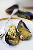 Mussels in an Herb Butter Sauce