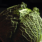 Whole Head of Savoy Cabbage