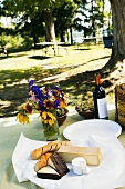 Picnic Set Up Outdoors at Picnic Area by a Lake; Wine, Cheese, Bread and Flowers