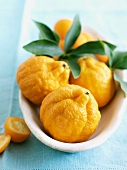 Fresh Oranges in an Oval Dish