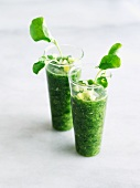 Watercress and Cucumber Blend in Shot Glasses