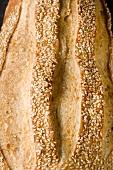 Loaf of Sesame Bread