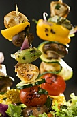 Marinated Chicken and Vegetable Kabobs
