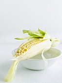 Partially Peeled Ear of Corn on a White Bowl