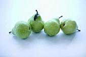 Vier grüne Anjoubirnen