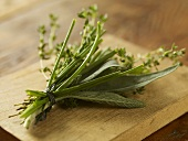 Bouquet Garni; Fresh Herb Bundle; Sage, Chived and Thyme